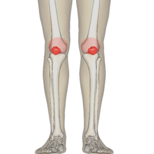 tight hip flexors and hamstrings symptoms